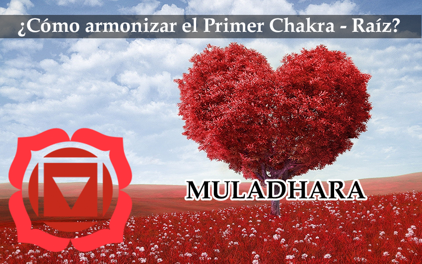 Cómo Armonizar Nuestro Primer Chakra(raíz): Muladhara